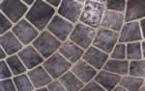 Adhesive Stencil Fish Scale